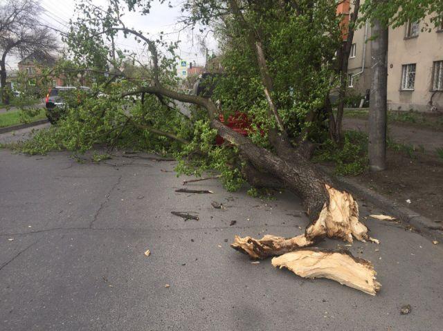 Основная часть  Владикавказа осталась без света из-за сильного ветра