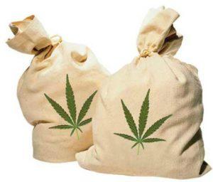 marihuana_travka